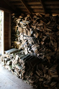 My old shed is filled with dry cedar for a few years of backyard fire-pit fun!