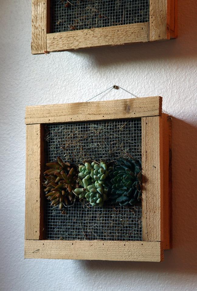 Wall-hung plant boxes3